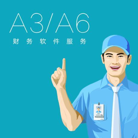 A3/A6服务费A3服务费