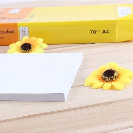 欣乐A4复印纸(黄包)欣乐A4复印纸黄包/70g/10包一箱